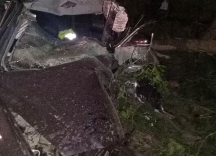 авария-Трубчевск-двое погибли-в дерево1