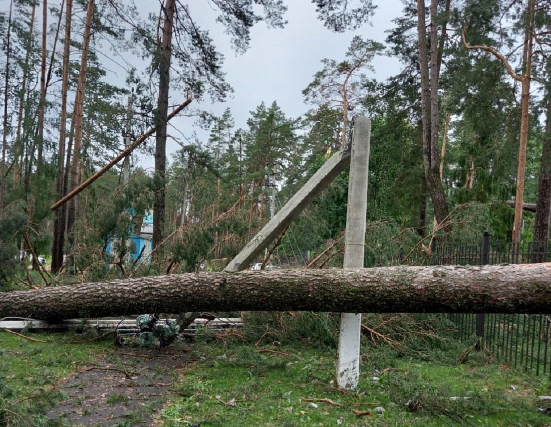 Ураган разрушил санаторий «Мать и Дитя» под Брянском